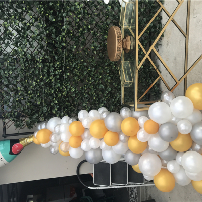 Balloon Garland Champagne Bottle ( Inc Installation )