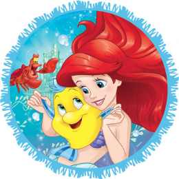 Disney Ariel Dream Big