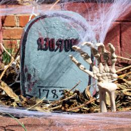 Timbstone & Backyard Decortion
