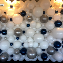 Balloon Wall Organic on the Frame