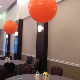 60cm Plain Colour Premium Latex Balloon with Helium & Weight